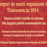 Targuri de nunti in Timisoara 2014