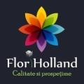 Flori Holland En Gros - Violette Boutique de Fleurs, Concept Store